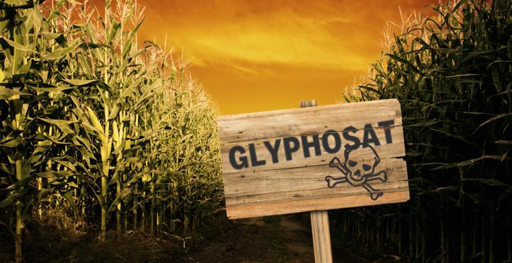 Antrag: Kein Einsatz des Herbizidwirkstoffs Glyphosat und von Neonikotinoiden auf gemeindeeigenen Flächen