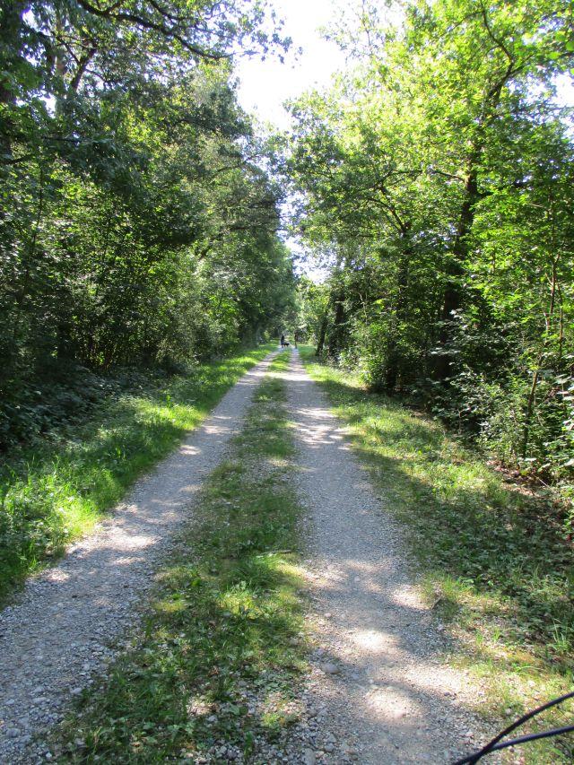 Antrag zum Ausbau des Radwegenetzes